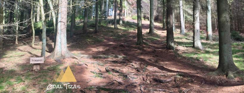 Ødal Trail
